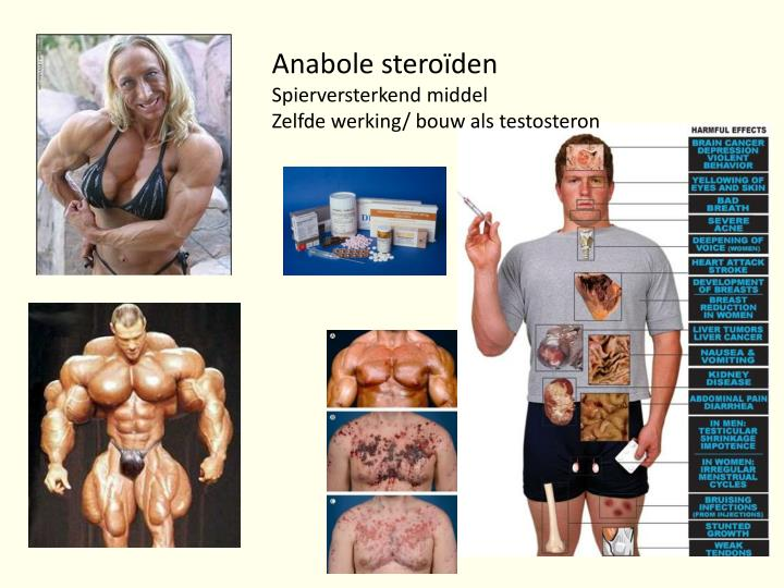 Anabole steroïden