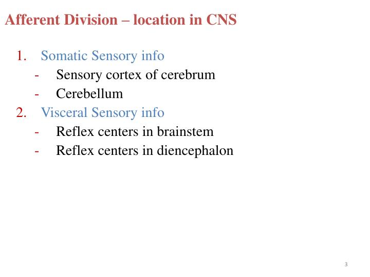 Afferent division location in cns