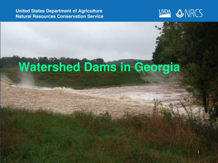 watershed dams in georgia n.