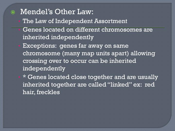 Mendel's Other Law: