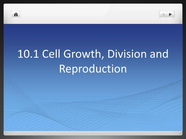 10 1 cell growth division and reproduction n.