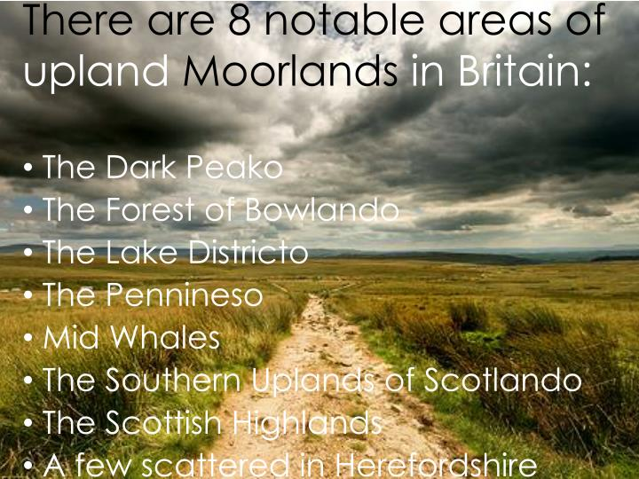 There are 8 notable areas of