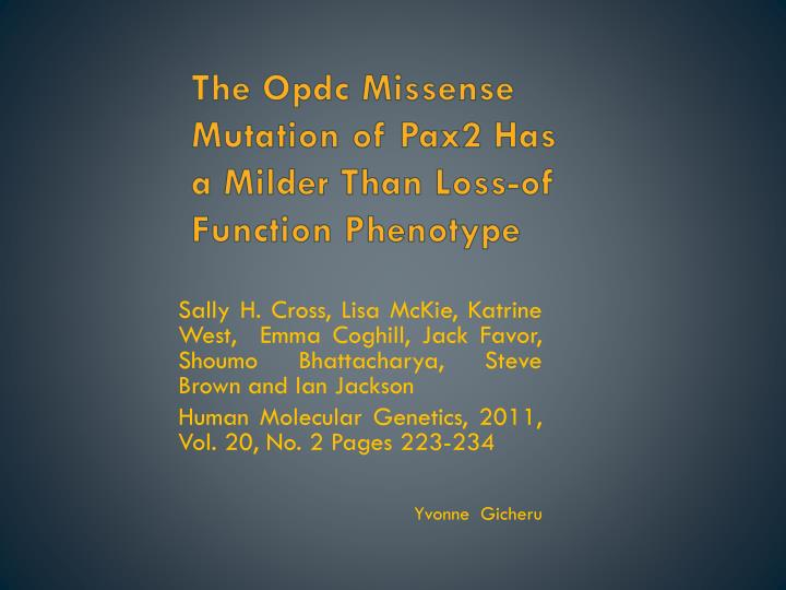 the opdc missense mutation of pax2 has a milder than loss of function phenotype n.