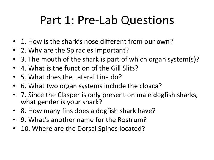 Part 1: Pre-Lab Questions