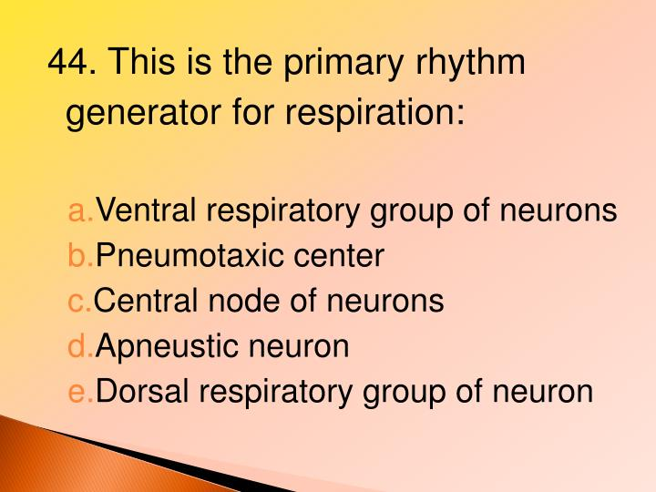 44. This is the primary rhythm generator for respiration: