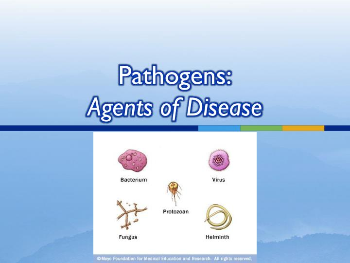 pathogens agents of disease n.