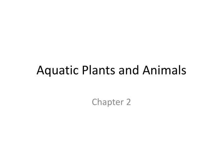 aquatic plants and animals n.