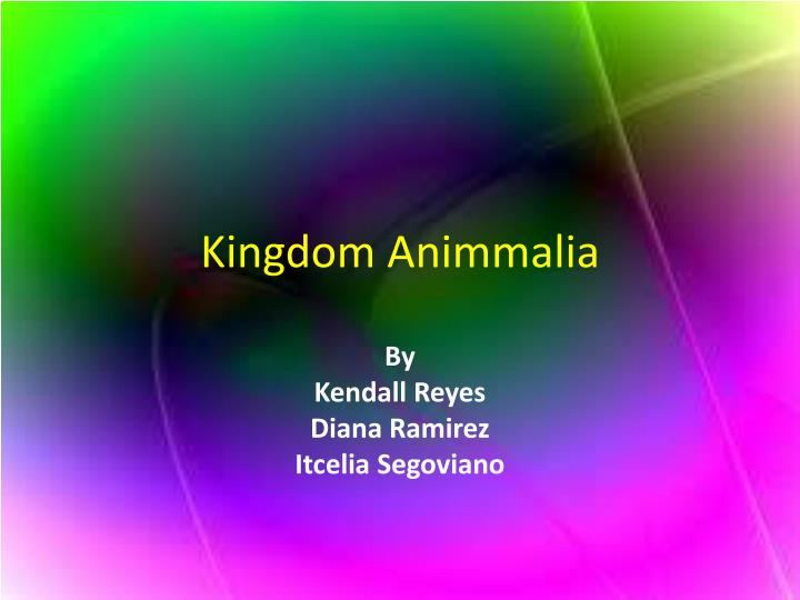 kingdom animmalia n.
