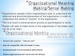 organizational meaning making sense making