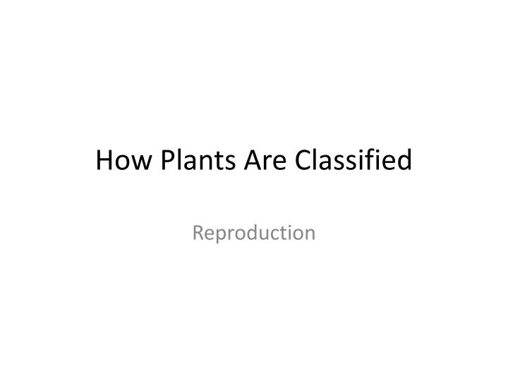 how plants are classified n.