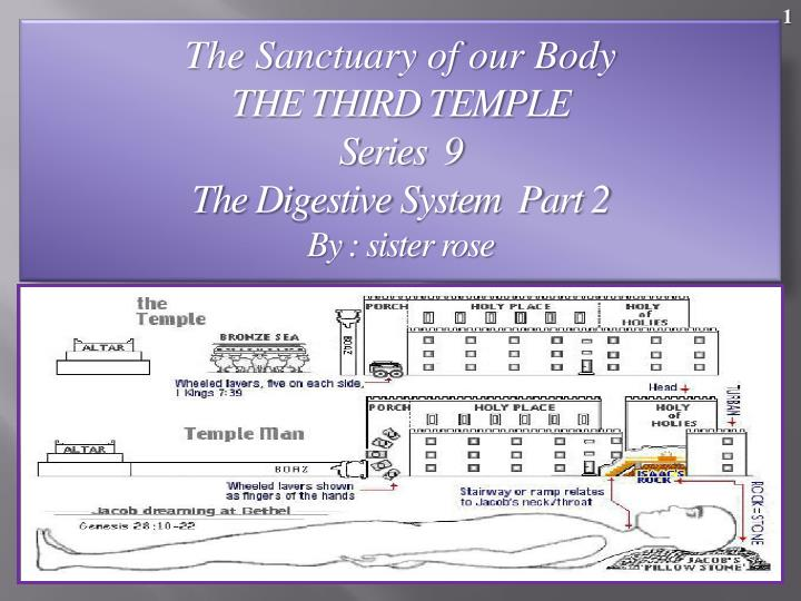 the sanctuary of our body the third temple series 9 the digestive system part 2 by sister rose n.