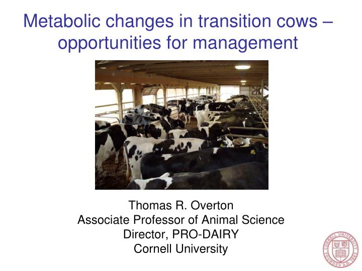 Metabolic changes in transition cows opportunities for management