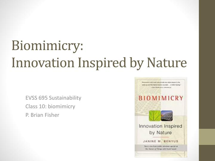 biomimicry innovation inspired by nature n.