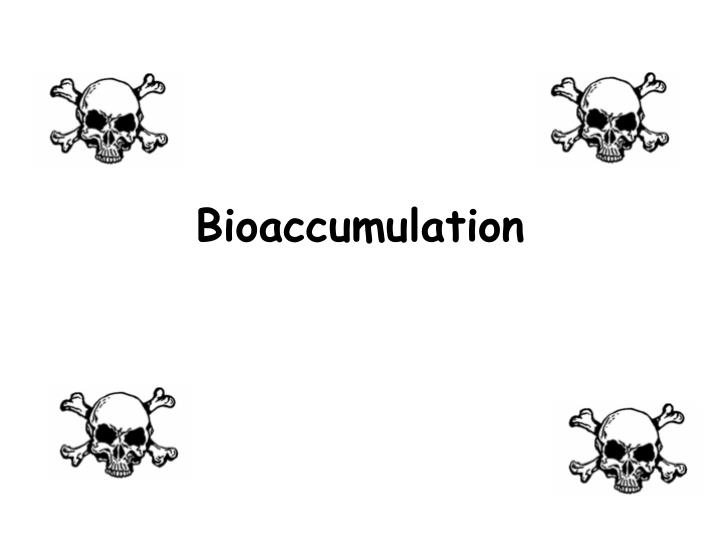 bioaccumulation n.