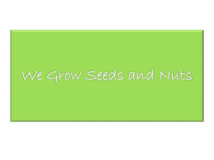 We Grow Seeds and Nuts