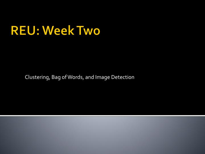 clustering bag of words and image detection n.