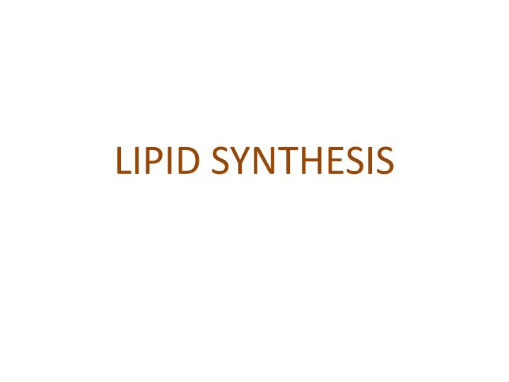 an essay on the subject of lipids