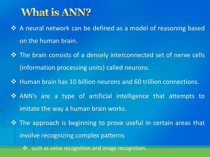 What is ann