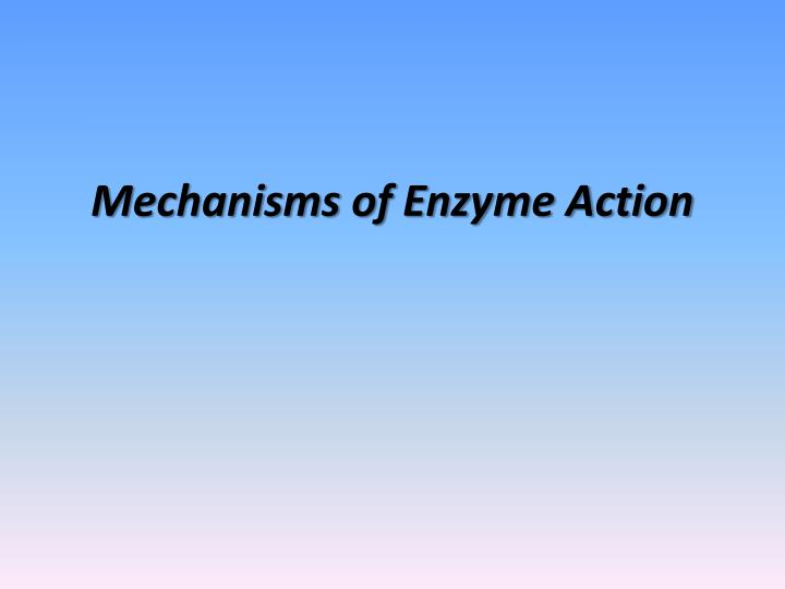 mechanisms of enzyme action n.