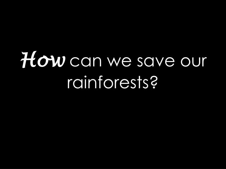 how can we save our rainforests n.