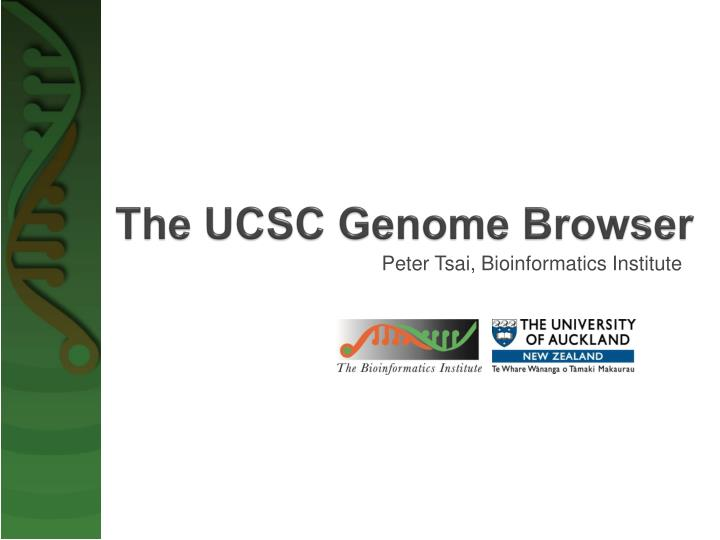 the ucsc genome browser n.