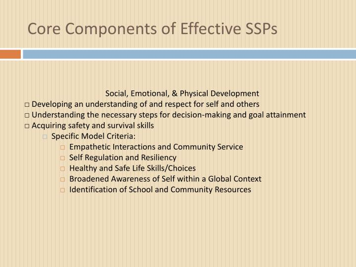 Core Components of Effective SSPs