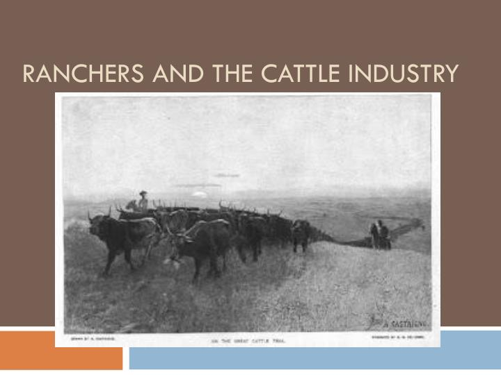 ranchers and the cattle industry n.