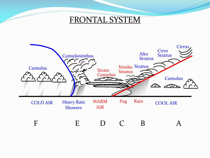 FRONTAL SYSTEM