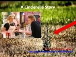 a cinderella story3