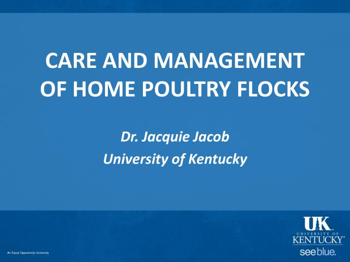 care and management of home poultry flocks n.