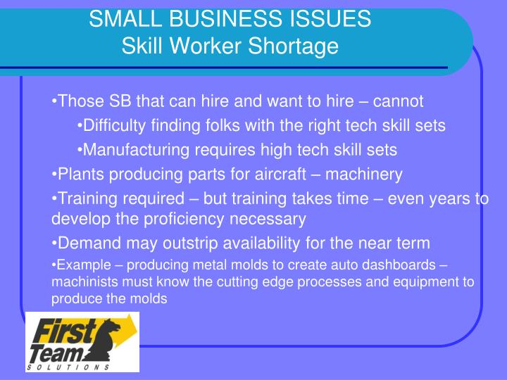 SMALL BUSINESS ISSUES