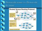 protocoale rutate vs protocoale de rutare