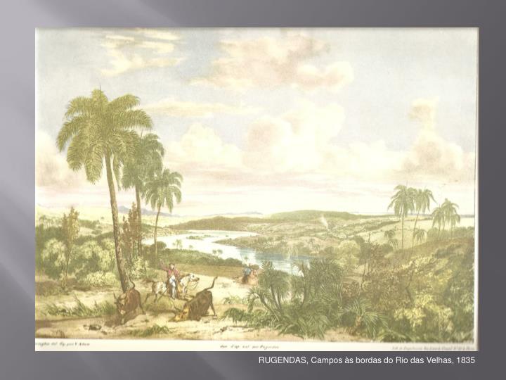 RUGENDAS, Campos às bordas do Rio das Velhas, 1835