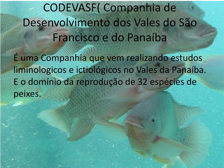 CODEVASF( Companhia de Desenvolvimento dos Vales do São Francisco e do Panaíba