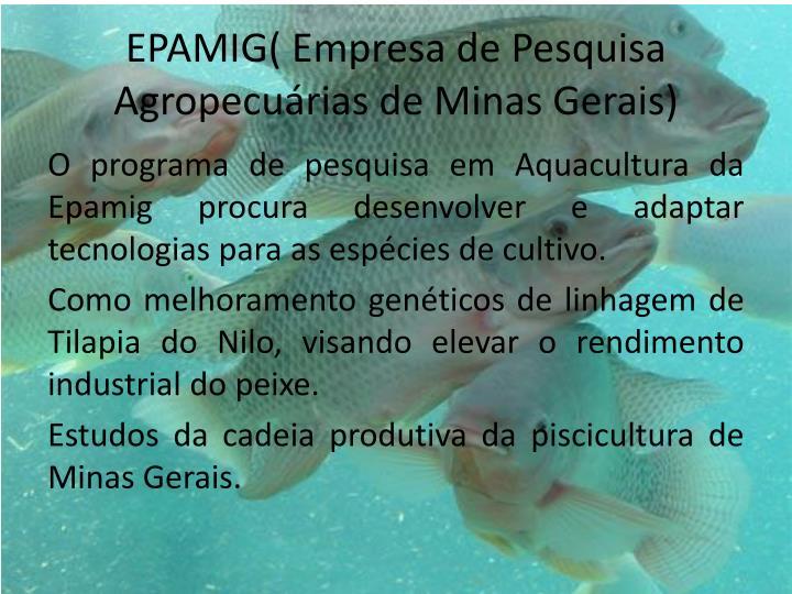 EPAMIG( Empresa de Pesquisa Agropecuárias de Minas Gerais)