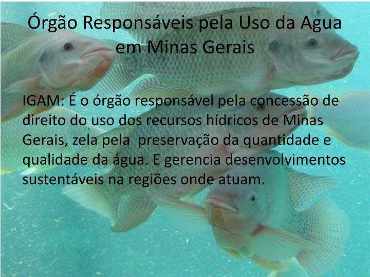 Rg o respons veis pela uso da agua em minas gerais