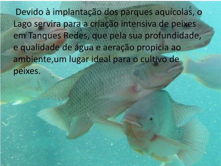 Devido à implantação dos parques aquícolas, o Lago servira para a criação intensiva de peixes em Tanques Redes, que pela sua profundidade, e qualidade de água e aeração propicia ao