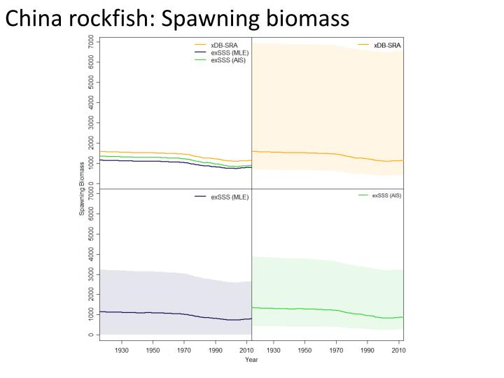 China rockfish: Spawning biomass