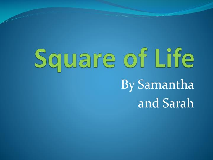 square of life n.