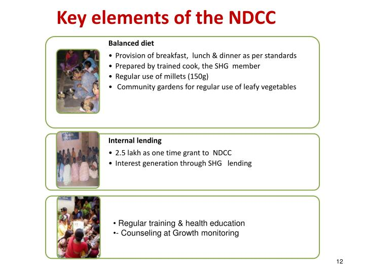 Key elements of the NDCC