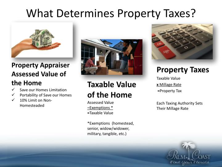 What Determines Property Taxes?