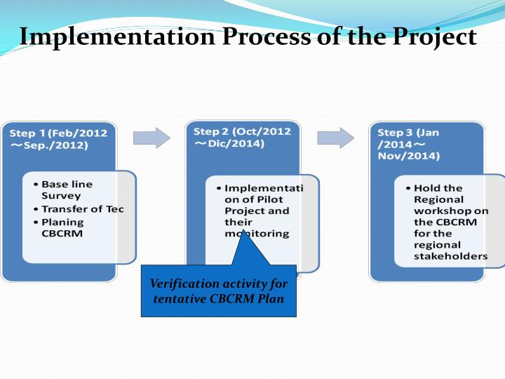 Implementation Process of the Project