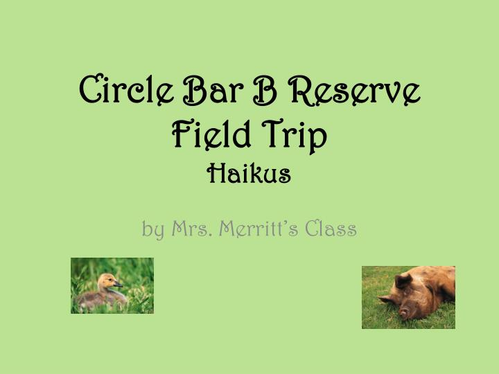 circle bar b reserve field trip haikus n.