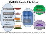 castor oracle dbs setup