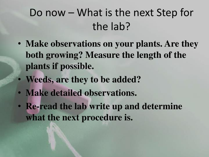 do now what is the next step for the lab n.