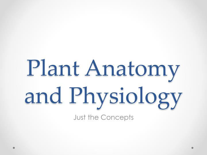 plant anatomy and physiology n.