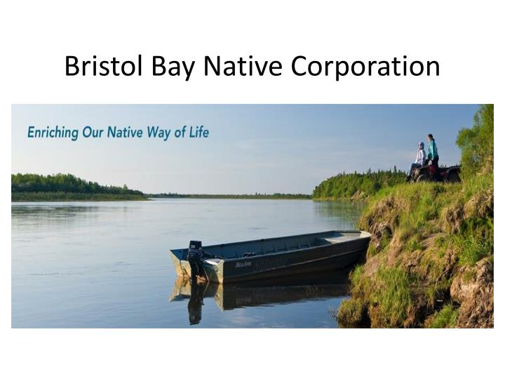bristol bay native corporation n.