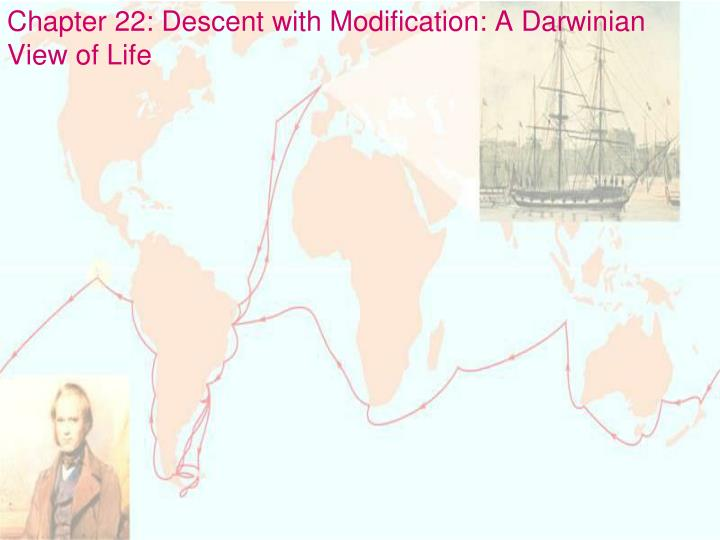 chapter 22 descent with modification a darwinian view of life n.