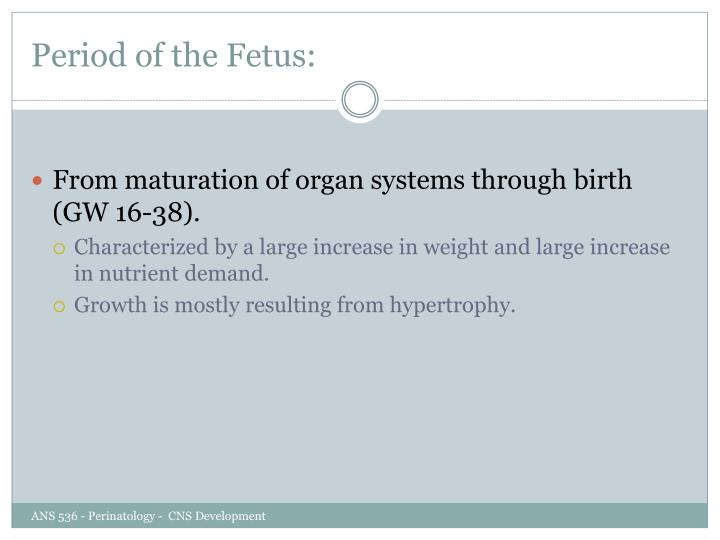Period of the Fetus: