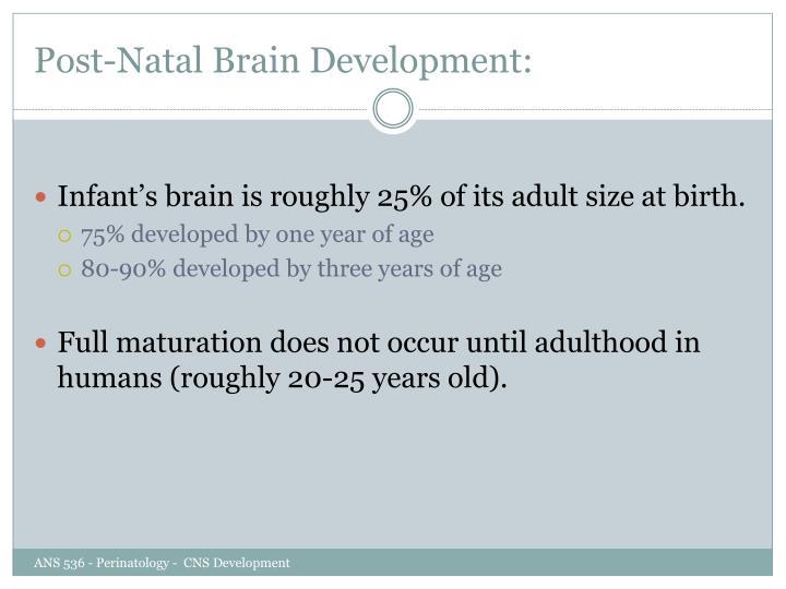 Post-Natal Brain Development: